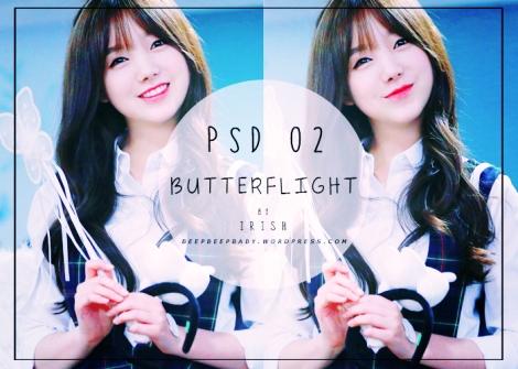 psd-02-butterflight